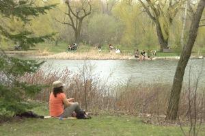 Autour de l'étang, une vie différente s'y déroule