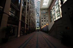 Un atrium rehaussé par la lumière du jour.