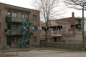 Cachées derrière les façades, les cordes à linge sont reines des lieux.