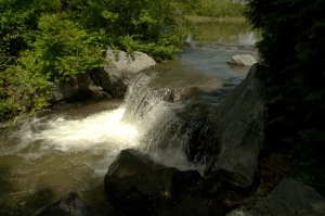 La vie est une eau qui s'enfuit (Jean-Marie Gustave Le Clézio)