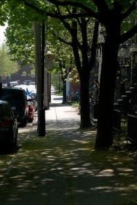 Les mystères de ma rue à découvrir...