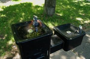 Avez-vous soif? Si oui, l'eau de pluie suffira!