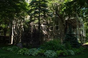 Une végétation luxuriante sert d'écran solaire aux balcons bien vides