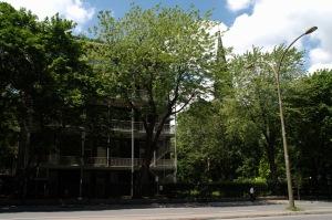Cette même aile gauche de l'Université Concordia vue de la façade