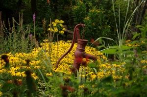 Ce jardin ressemble à une bénédiction de Dieu dans la solitude