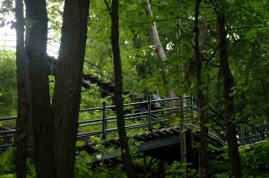 Il y a les courageux qui montent les escaliers, et les sages qui les descendent ;-)