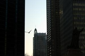 Les oiseaux ressemblent à des vagues Et les vagues aux oiseaux (Jacques Brel)