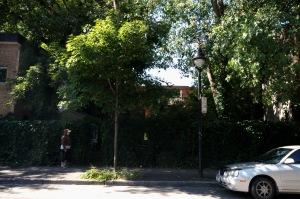 À deux pas du jardin communautaire, un terrain qui n'est plus vague