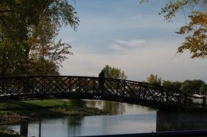 Un pont peut être source de découvertes...