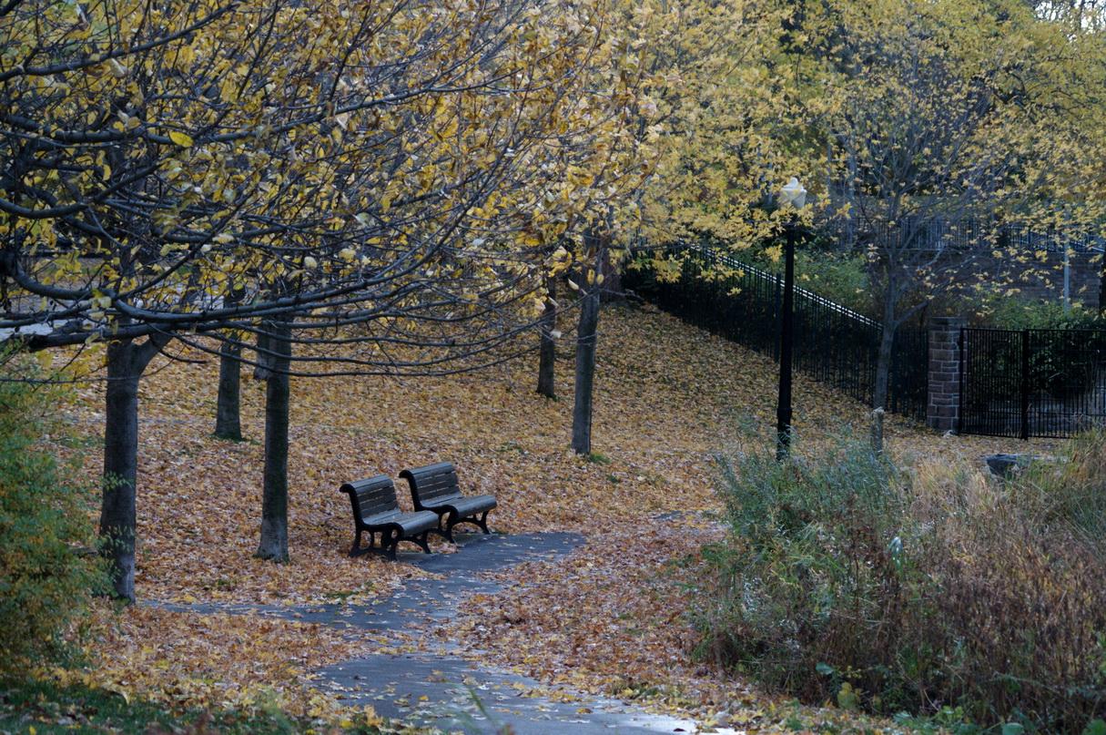Montréal - Page 2 Chronique-d_un-jour-d_automne_004