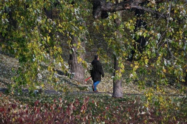 Chronique d_un jour d_automne_006