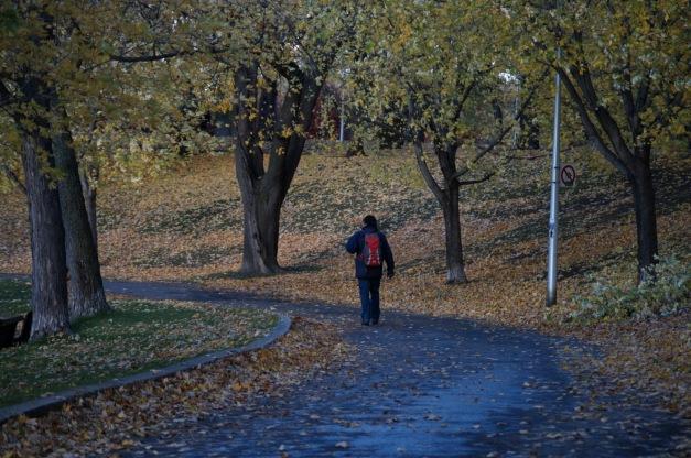Chronique d_un jour d_automne_008