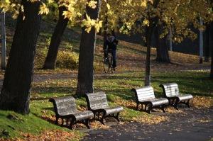 Chronique d_un jour d_automne_009