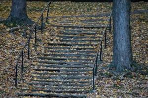 Chronique d_un jour d_automne_010