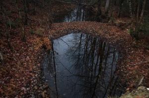 Lac Hénault_006