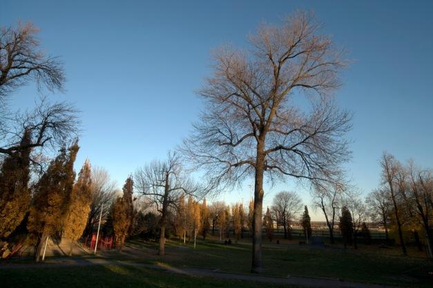 Un parc dans mon quartier_016