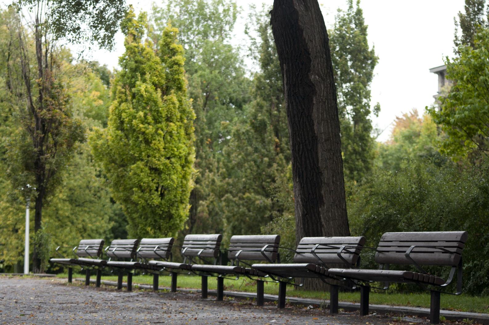 dans un parc d sert sur un banc oubli il y a l automne les beaut s de montr al. Black Bedroom Furniture Sets. Home Design Ideas