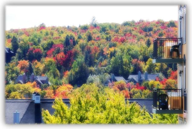 Un automne dans les Laurentides, entre Montréal et Mont-Tremblant, au Québec