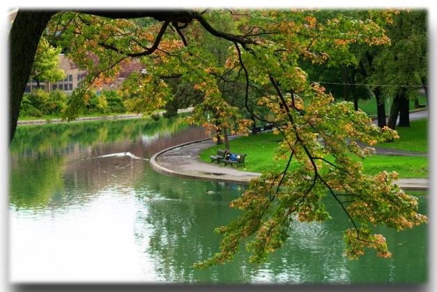 L'automne au parc Lafontaine de Montréal et quelques poèmes sur l'automne