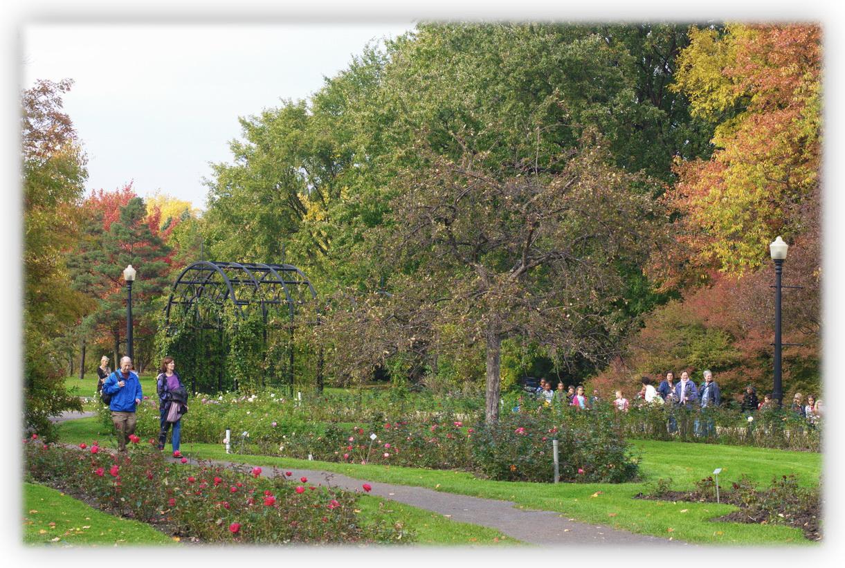 Jardin botanique les beaut s de montr al for Botanique jardin montreal