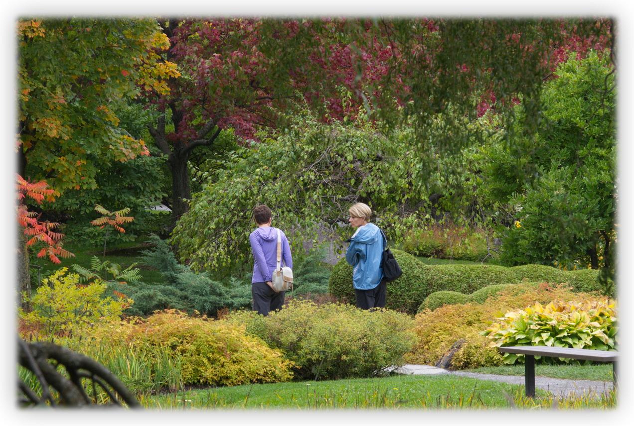 L ombre de l orient les beaut s de montr al for Jardin botanique de conception