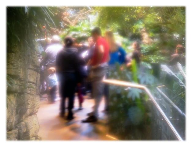Le Biodôme de Montréal, dont le nom signifie « maison de la vie », expose ses visiteurs à la « vraie nature » des Amériques, dans ce que leurs écosystèmes ont de plus beau et de plus étonnant