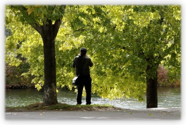 Montréal a une âme qui lui est propre par la présence de ses parcs, de ses arbres, de ses aires de repos