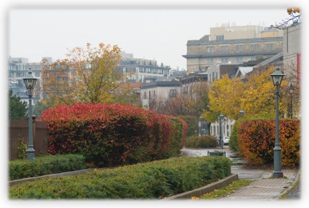 Zones d'ombre, nuages menaçants, pluies d'automne, mais journée agréable