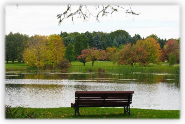 Étangs du jour, automne du soir, soleil brillant, temps gris