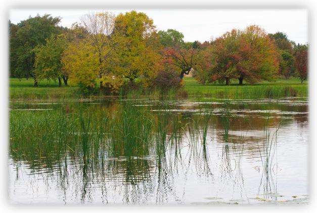 Souvenirs d'automne, poésies de Rainer Maria Rilke, célébrons l'automne de la vie