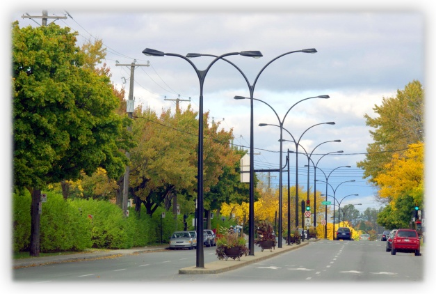 Errer dans les rues de Montréal. Se promener dans les rues de Montréal. Observer la nature dans les rues de Montréal. Courir, marcher, rêver dans les rues de Montréal