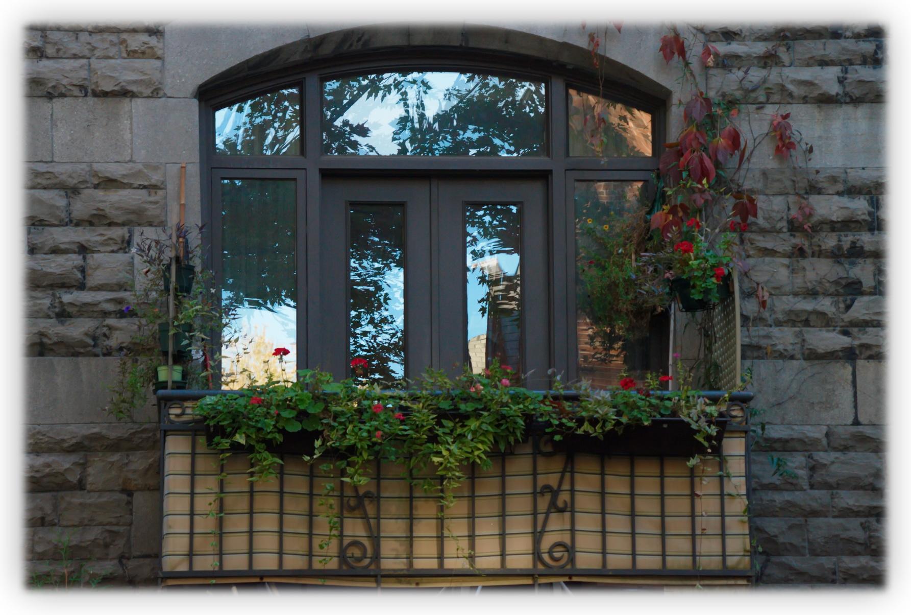 05 octobre 2012 les beaut s de montr al for Porte fenetre montreal