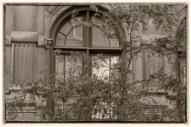 fenêtre de lumière, fenêtre de solitude, fenêtre d'automne, les humeurs sont à la fenêtre et à travers la fenêtre s'écoulent les heures du jour et de la nuit