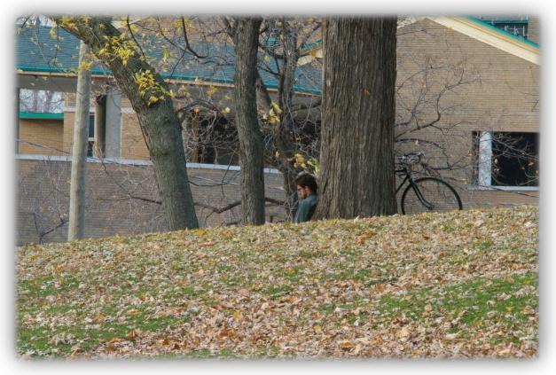 En attendant la neige, les rues, les trottoirs et les escaliers de Montréal sont jonchés de feuilles mortes