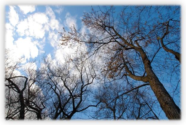 Peut-on priver un photographe des couleurs de la nature