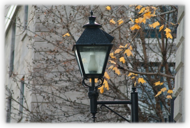Un jour d'automne froid marqué sous le sceau de l'ennui avec, à ses portes, un hiver menaçant