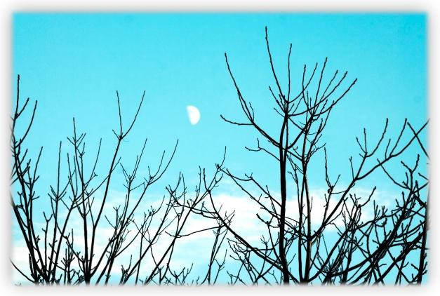 Voyage rapide en Estrie où le ciel se montre capricieux et éblouissant