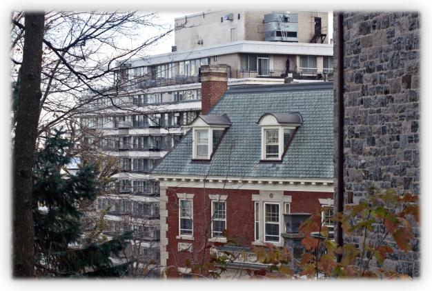 Visions de Montréal à travers les dentelles de l'automne
