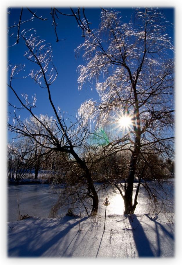 Murmures dans les vents polaires, de Marcel Asselin