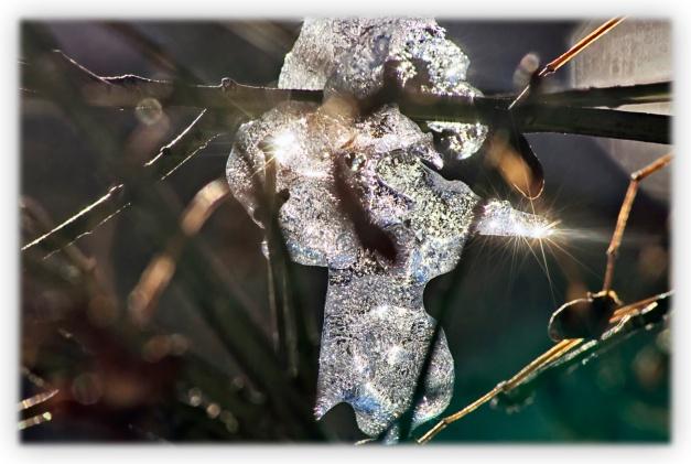 De lumière et d'ombre le froid sème quelques beaux cristaux pour éblouir l'heure