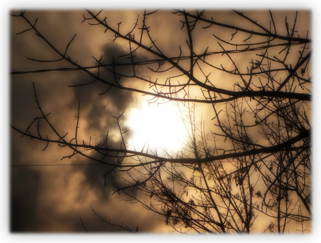 La pluie c'est comme le crépuscule de la vie. Demain les merveilleuses photos d'un automne de crystal de mon ami Marcel Asselin. Un jour de repos supplémentaire ;-)