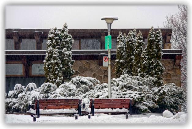 La neige s'éparpille dans les replis de l'hiver