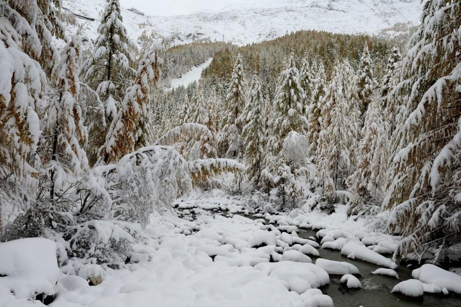 Finir 2012 dans les Alpes