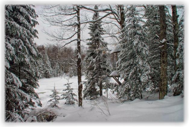 Le royaume du prince de l'hiver