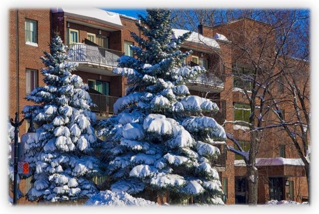 Les 45 cm de neige sur Montréal, bientôt un mauvais souvenir?