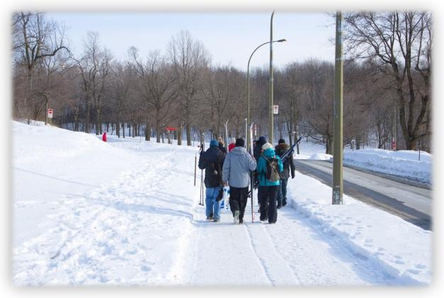 Une longue, une très longue promenade