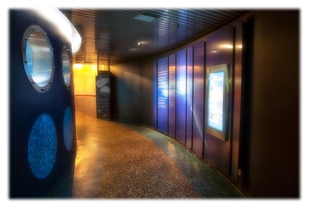 J'ai trouvé refuge au Biodôme de Montréal