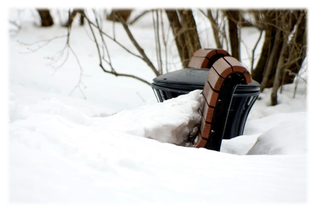 Pensées d'hiver