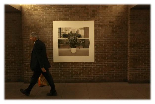 Art souterrain, édition 2013